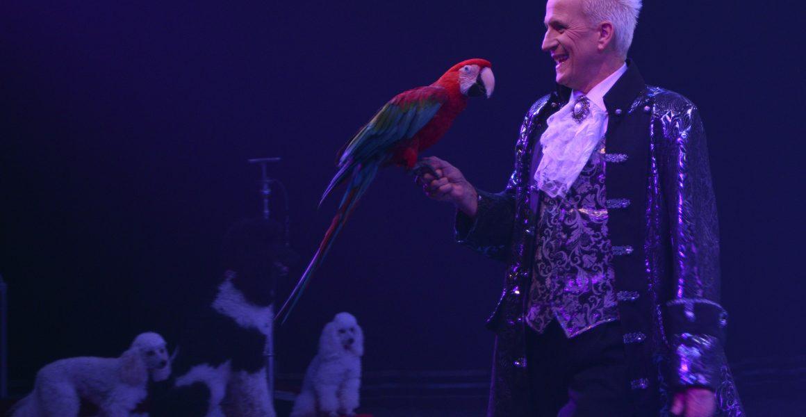Papageien-Revue